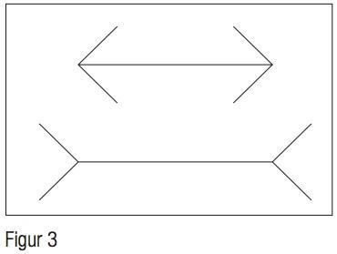 Kahneman_figur3