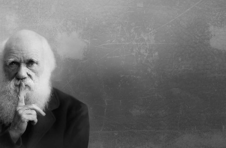 Darwinist og feminist? Ja visst!