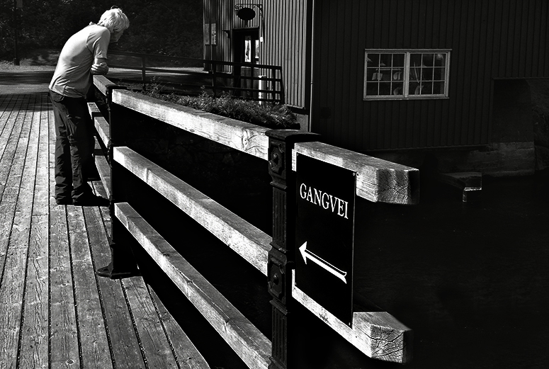 Lever vi i ensomhetens tidsalder? Om ensomhet blant eldre