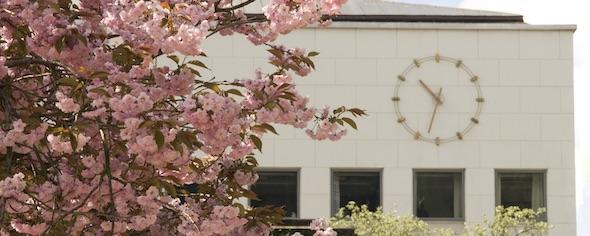Universitetet i Bergen søker førstekonsulent knytt eksamen og mottak