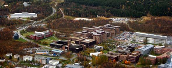 PhD in information literacy teaching at the University of Tromsø