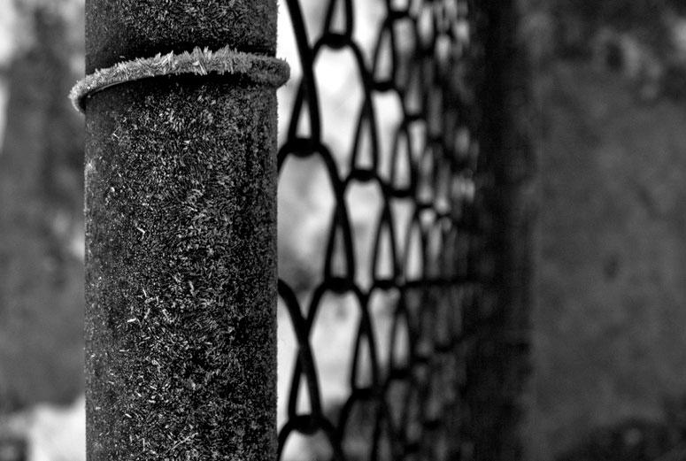 «Fra tvang til dialog» – en kvalitativ casestudie om ny praksis i en psykiatrisk sikkerhetsavdeling