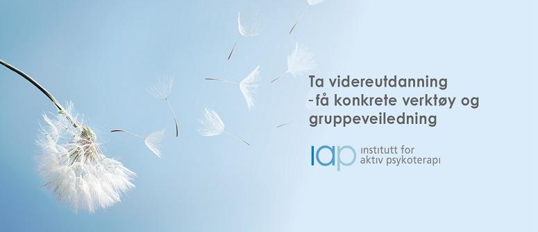 Institutt for aktiv psykoterapi (IAP) tilbyr videreutdanning i organisasjonspsykologi for psykologer