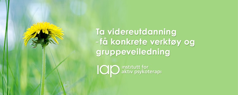 Institutt for aktiv psykoterapi (IAP) tilbyr valgfritt program i gruppeterapi for psykologer
