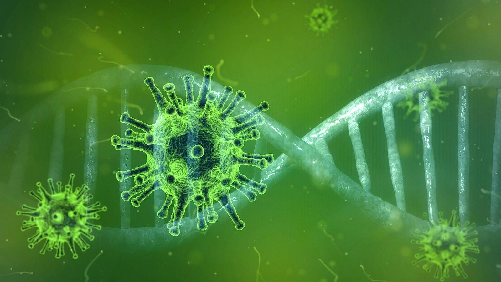 Hvorfor er vi så redd for coronaviruset?